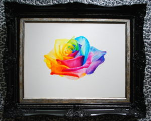 Rainbow Rose framed